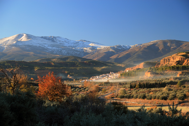 """Early Morning"" - Marquesado de Zenete, Granada - LS04266"
