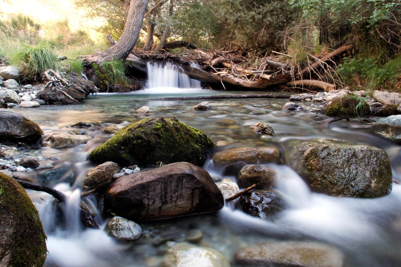 """Rio Dilar"" - PN Sierra de Nevada, Granada - WF08453"
