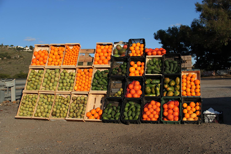 """""""The Color of Fruit"""" - Almuñecar, Granada - F04925"""