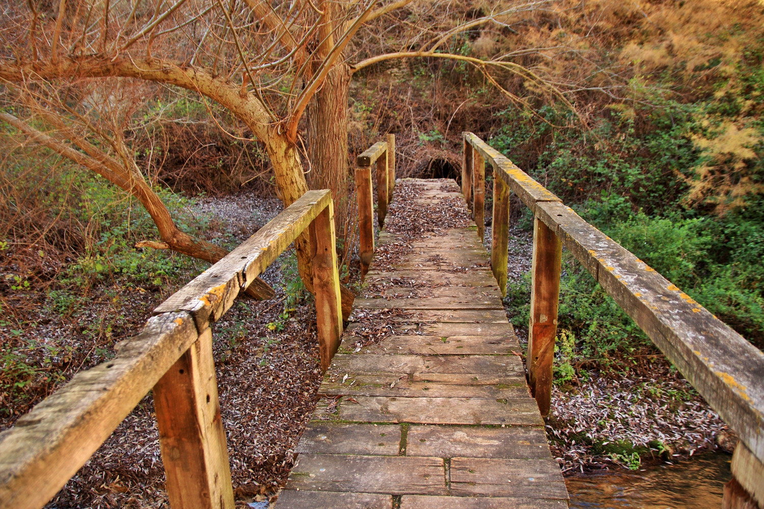 """The Wooden Bridge"" - Rio Cacin, Cacin, Granada - B05106"