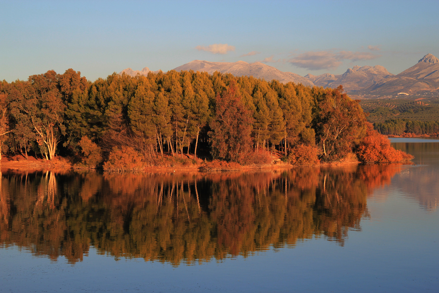"""Autumn Reflection"" - Pantano de Cubillas - L04443"