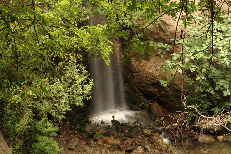 """""""Los Cahorros"""" - PN Sierra de Nevada, Granada - WF09249"""