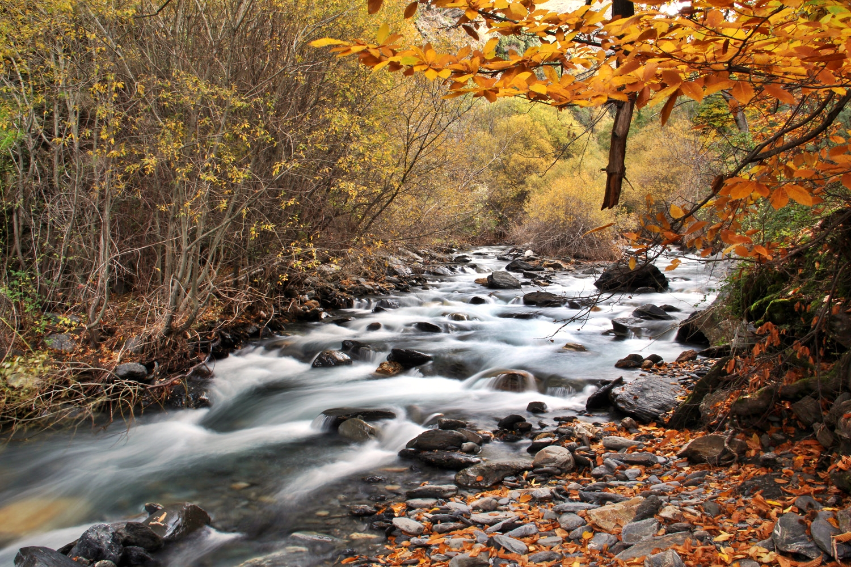 """Rio Genil"" - PN Sierra Nevada, Granada - R03454"