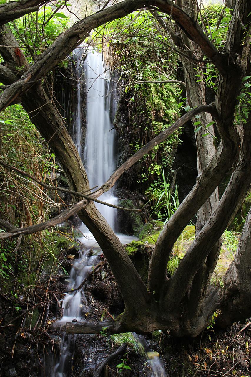 """""""Rio Monachil"""" - PN Sierra de Nevada, Granada - WF05185"""