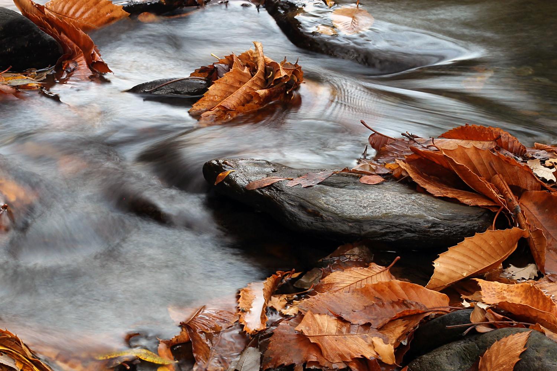 """""""Autumn River"""" Rio de Genil, Granada - WC00069"""