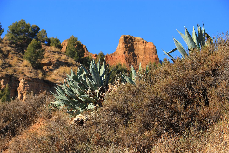 """Carcavas de Marchal"" - Guadix, Granada - DR04335"