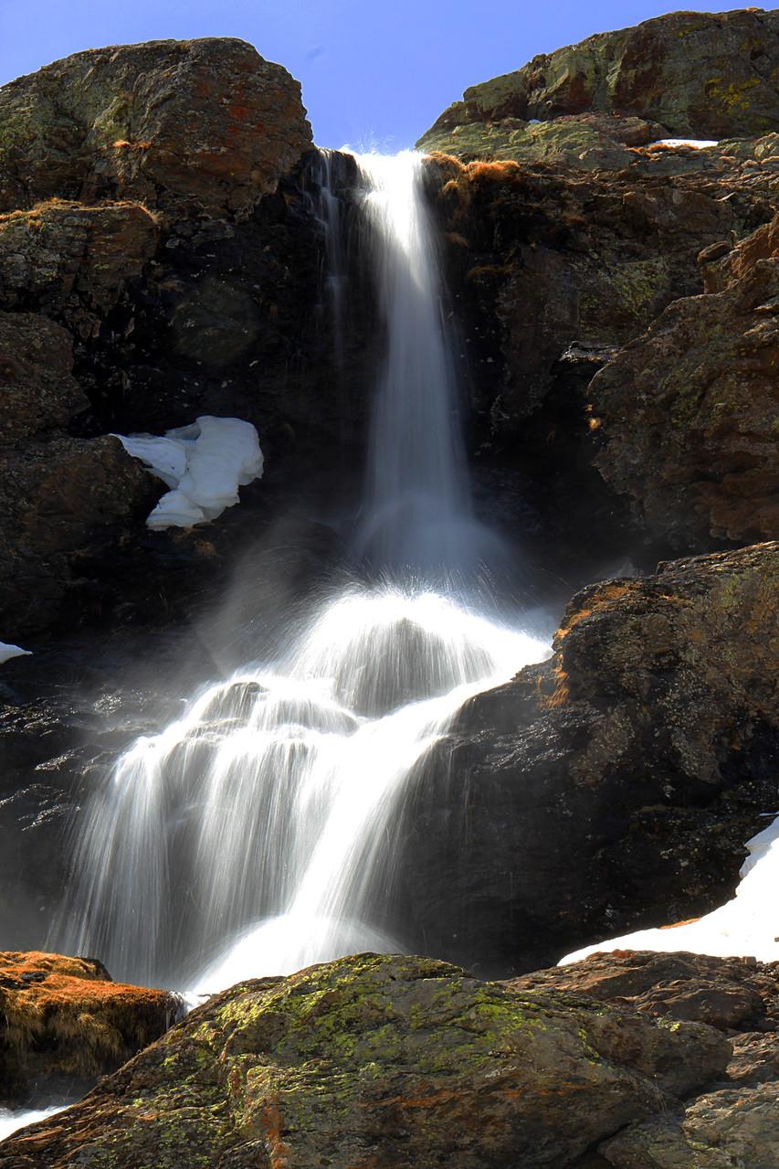 PN Sierra de Nevada, Granada - WF04361
