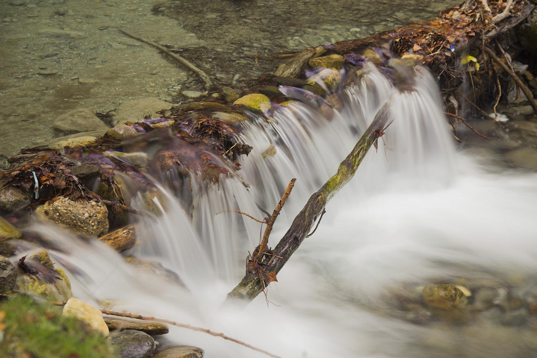 """""""Río Dilar"""" - PN Sierra Nevada, Granada - WF05926"""