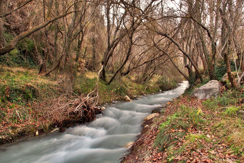 """""""Rio Durcal"""" - PN Sierra Nevada, Granada - R05156"""