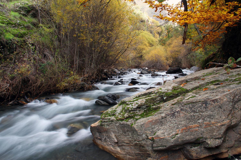 """Rio Genil"" - PN Sierra Nevada, Granada - R03455"
