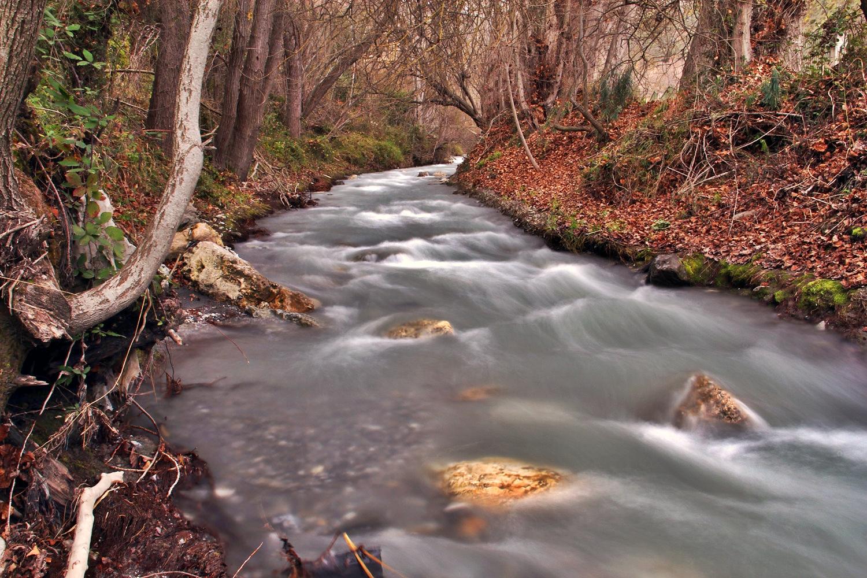 """""""Rio Durcal"""" - PN Sierra Nevada, Granada - R05187"""