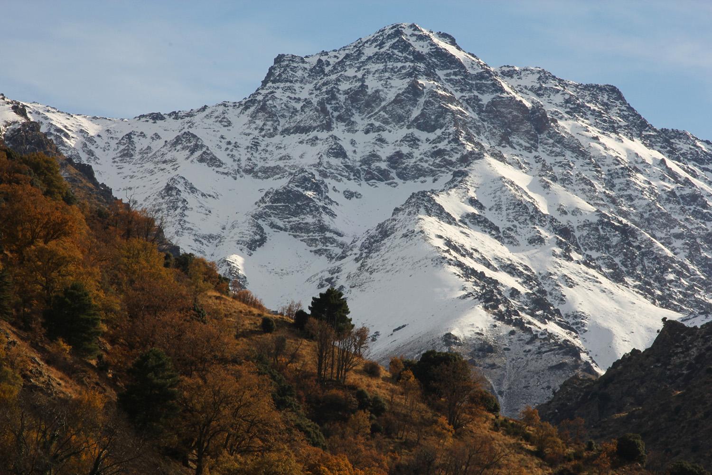 """""""High Peaks"""" - Sierra Nevada - LS09752"""