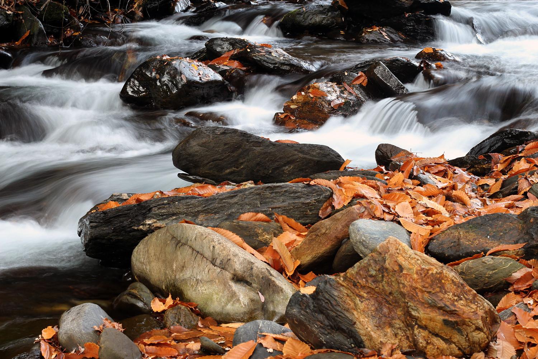 """Autumn Water"" - Rio Genil, PN Sierra Nevada, Granada - R00060"