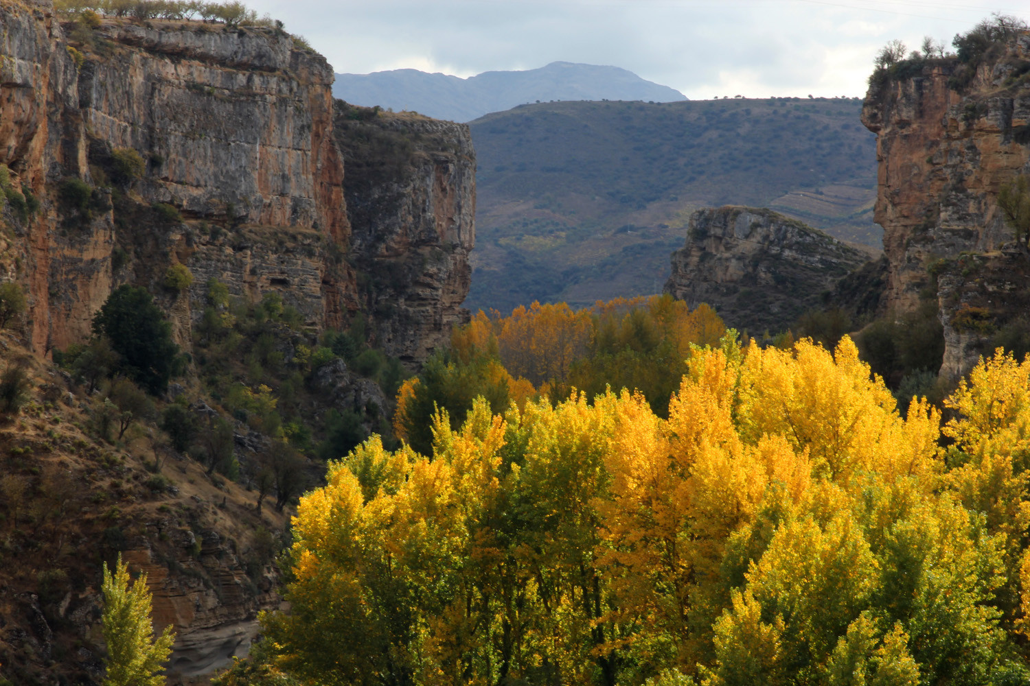 """Autumn Valley"" - Alhama de Granada - LS07874"