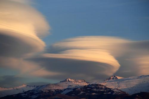 """""""Discs"""" - PN Sierra Nevada, Granada - MC05356"""