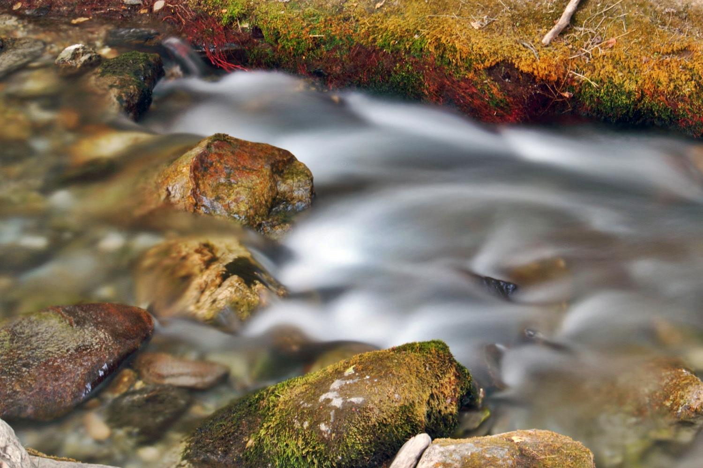 """""""Rio Dilar"""" - Dilar, Granada - WC08414"""