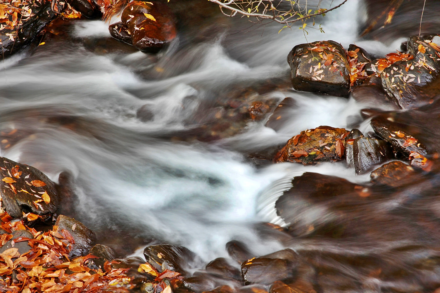 """Autumn Water"" - Rio Genil, PN Sierra Nevada, Granada - WC00114"