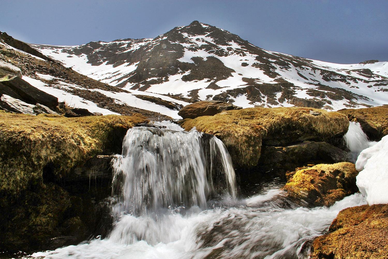 PN Sierra de Nevada, Granada - WF04401