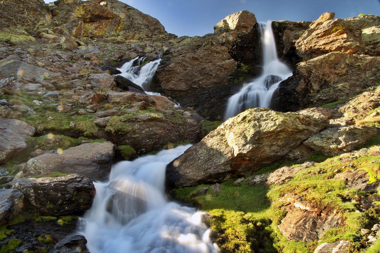 PN Sierra de Nevada, Granada - WF09361