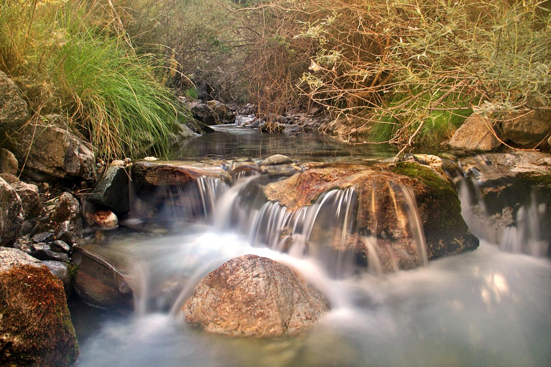 """Rio Dílar"" - PN Sierra Nevada, Granada - R08535"