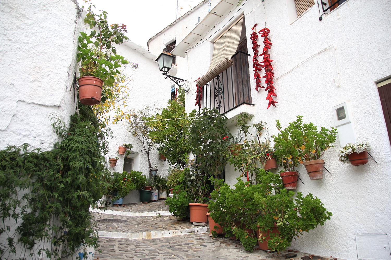 """""""Pampaneira"""" - Alpujarra, Granada - V06605"""