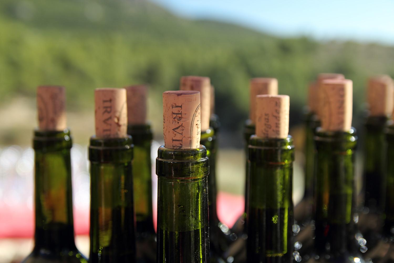"""""""The Wine Bottles"""" - Bodega Irving, Huescar, Granada - F03805"""