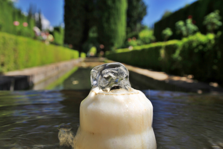 Generalife, Alhambra, Granada - ALH09568