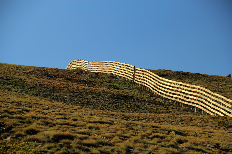 """The Fence"" - PN Sierra de Nevada, Granada - LS06299"