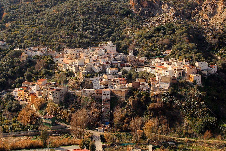 Ízbor, Granada - V01899