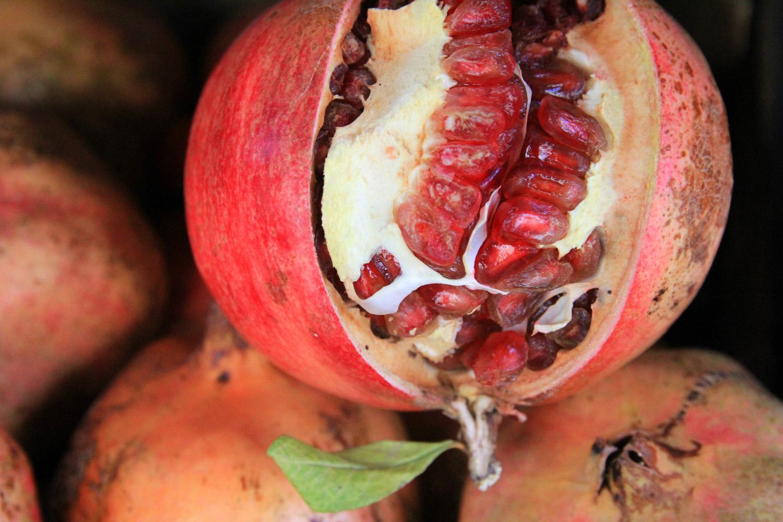 """""""Granada Fruit"""" - F05823"""