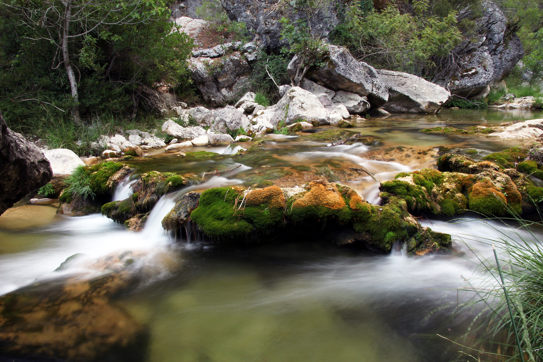 """Mountain Spring"" PN Sierra de Cazorla y Segura, Jean - R00468"