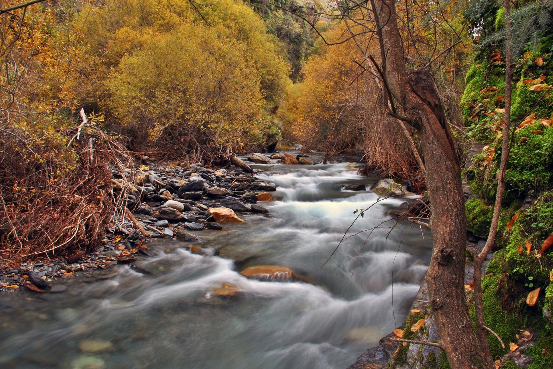 """Autumn River""- Rio Genil, PN Sierra Nevada, Granada - R03403"