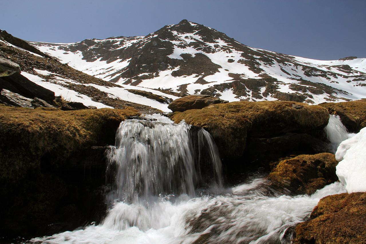 """""""Defrost Water"""" - PN Sierra Nevada - DF04401"""