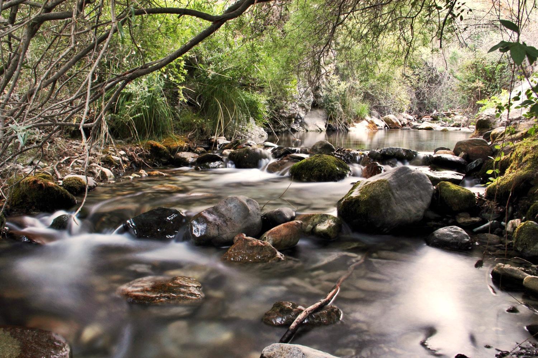 """""""Rio Durcal"""" - Durcal, Granada - R08405"""
