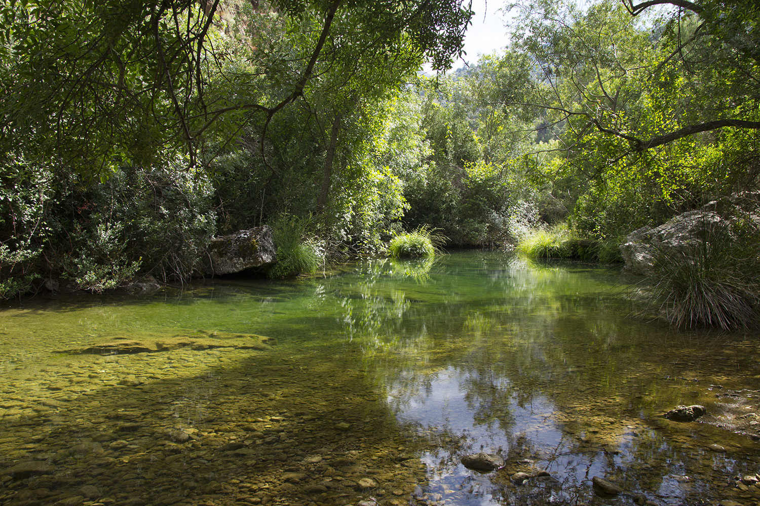 """Still Waters"" - PN Sierra de Cazorla - R00439"