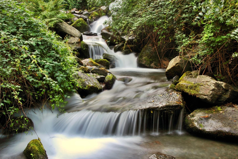 """Spring Water"" - Rio Genil, PN Sierra Nevada, Granada - R01420"