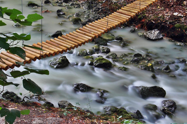 """The Tree Bridge II"" - Rio Cacin, Cacin, Granada - B00867"
