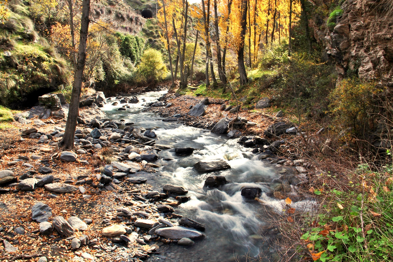 """Rio Genil"" - PN Sierra Nevada, Granada - R03526"