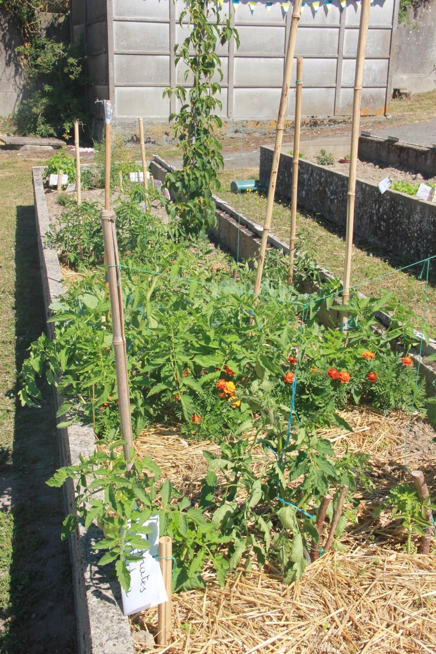 Le jardin de c zanne maison pour tous de ch tillon for Tous pour le jardin