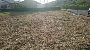畑の草刈り