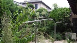 庭木剪定・除草剤散布