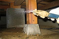 ご自宅に巣食う害虫を適切な方法で駆除いたします!