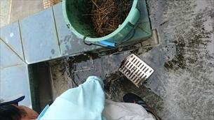 排水詰まり解消