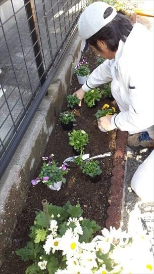 花植え・掃除