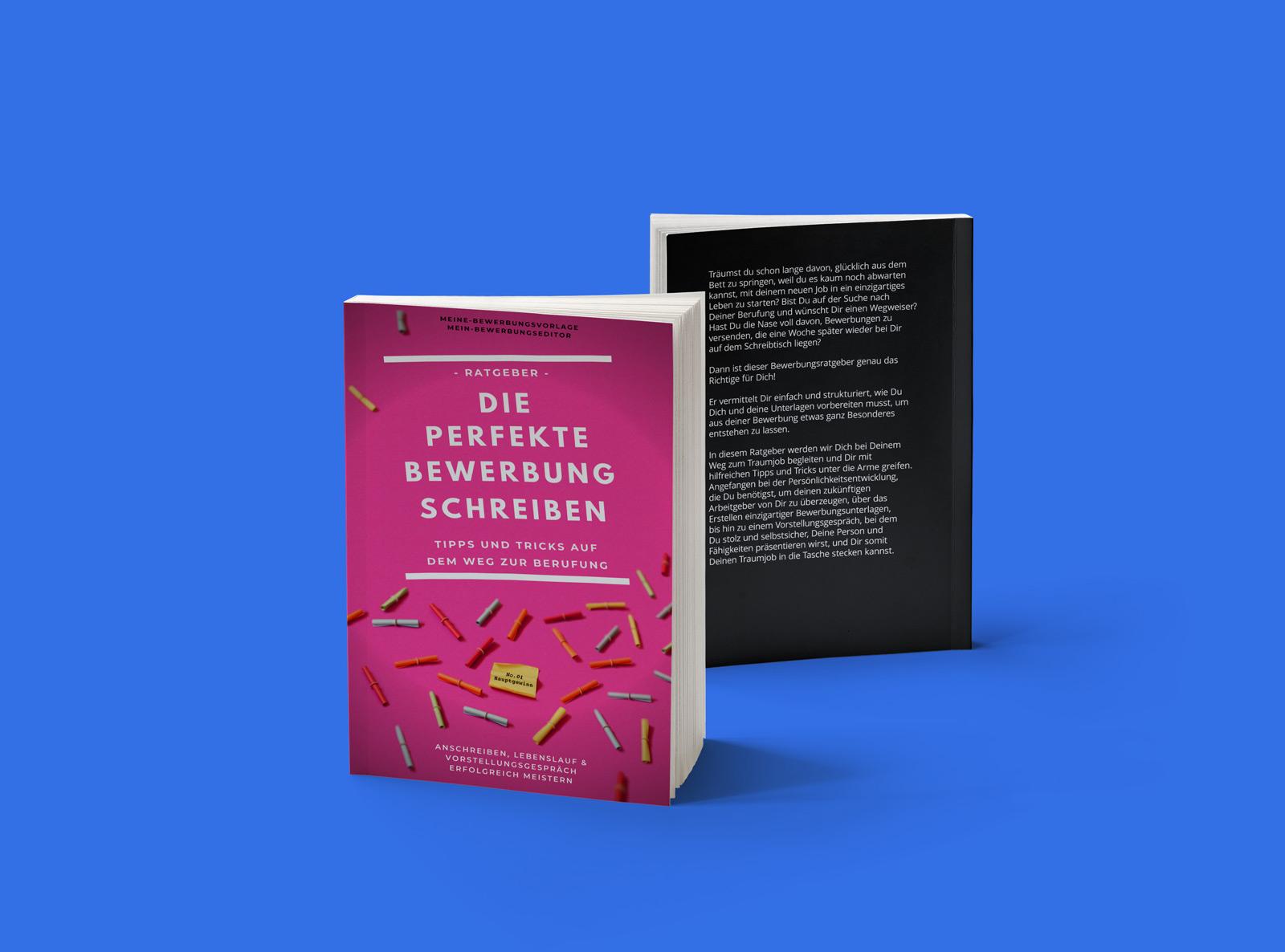 Bewerbungsratgeber Taschenbuch