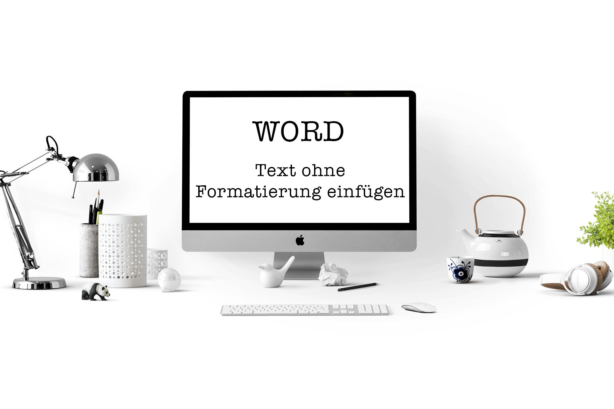 Text ohne Formatierung in die Lebenslaufvorlage einfügen