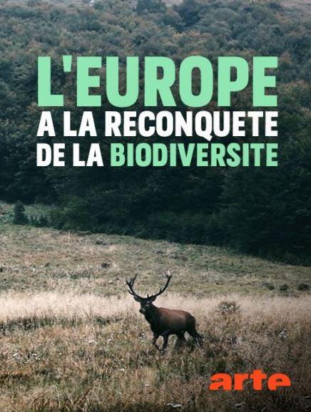 ARTE rediffuse un reportage passionnant sur le rewilding à l'européenne. A ne pas manquer !