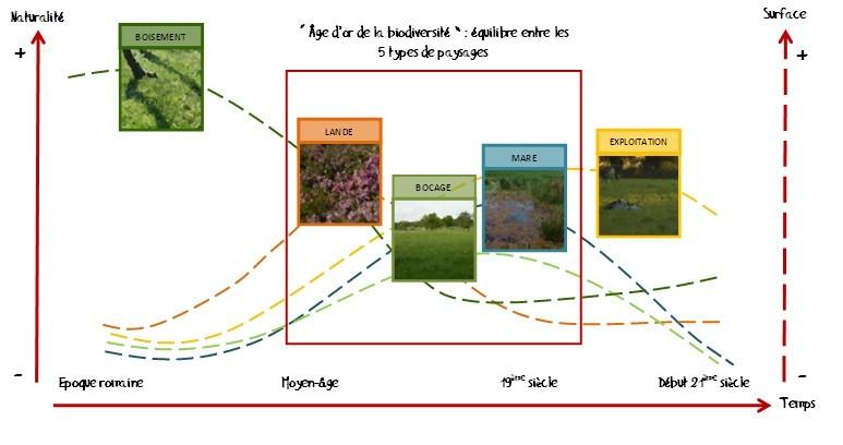 Schéma illustrant la variation des degrés de naturalité et d'articialisation des milieux de l'EPL à travers le temps