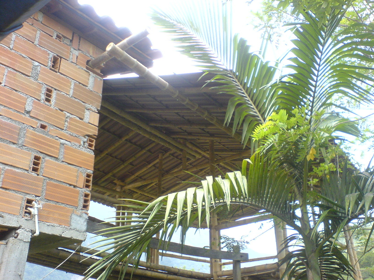 El nuevo techo
