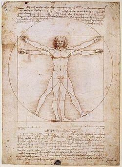 El hombre de Vitrubio, Leonardo da Vinci.